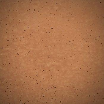 Detalle de corcho natural de 2,5 mm de espesor