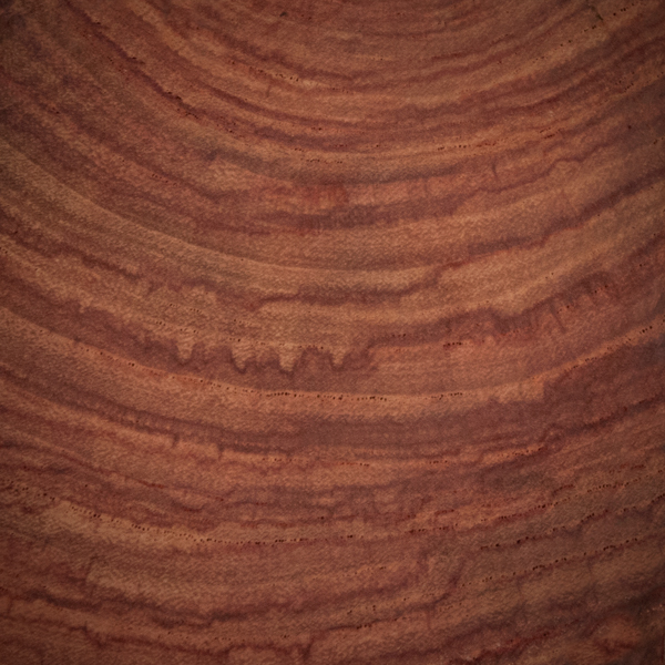 Detalle de madera de palo rosa